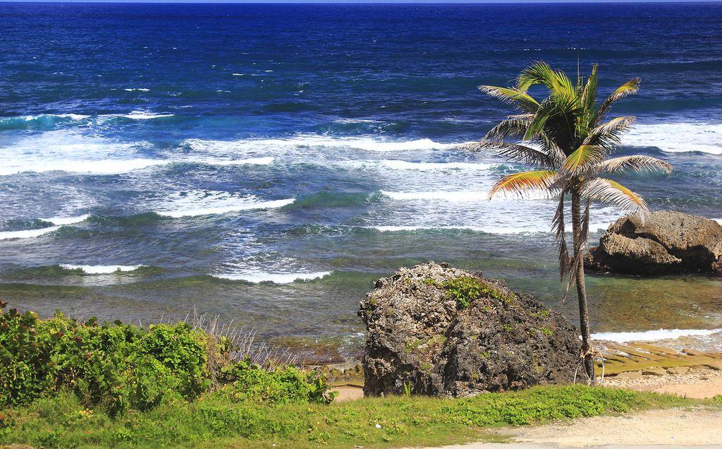 Остров Барбадос 8P9BZ