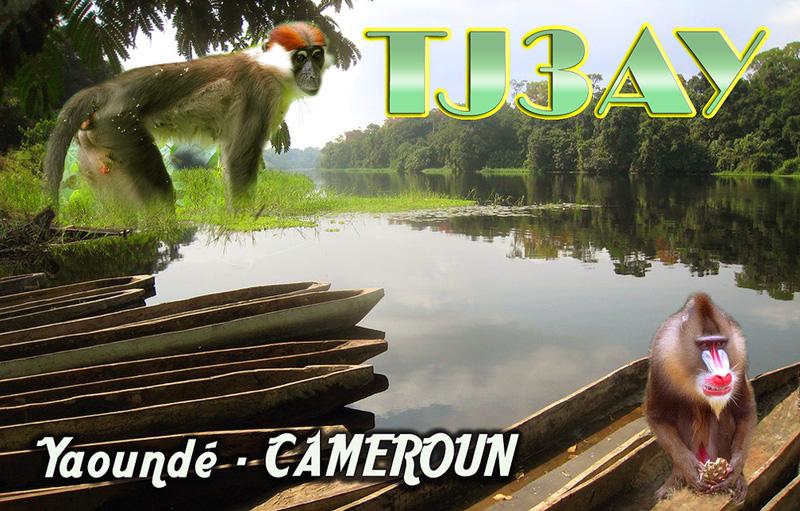 Камерун TJ3AY QSL