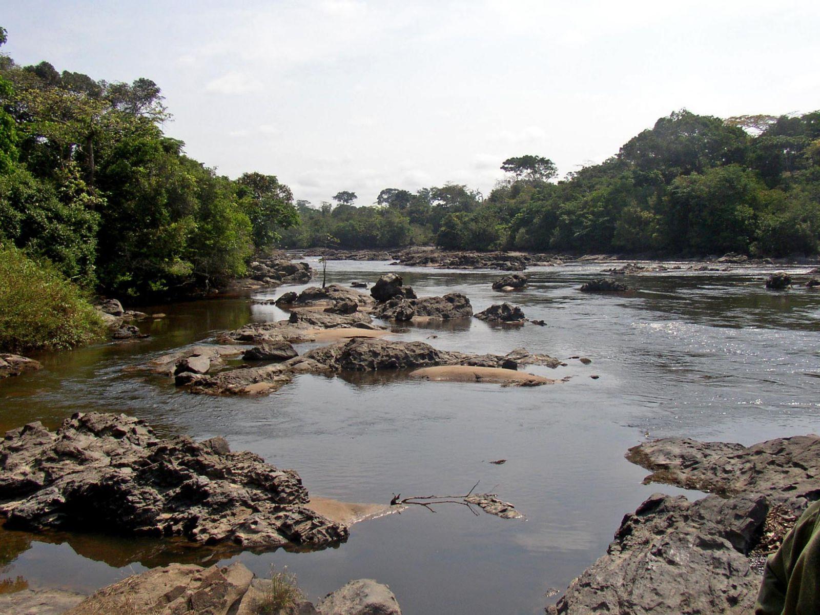 Конго TN2MS