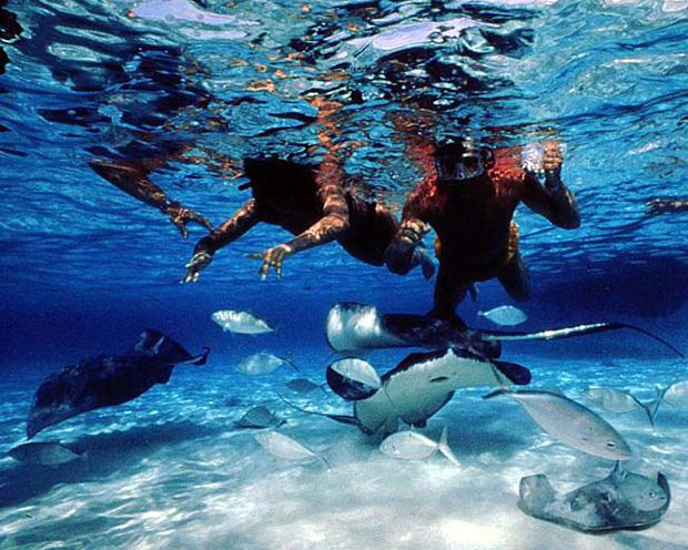 August  News Grand Cayman Island