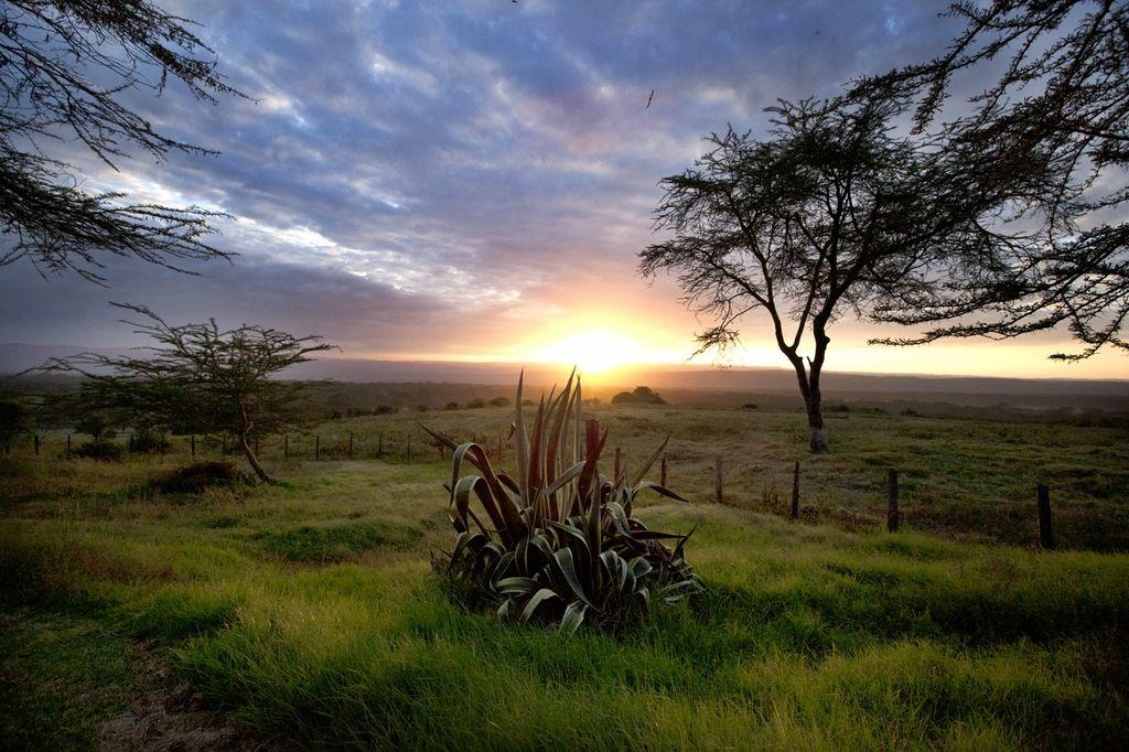 Кения 5Z/DL3YM DX Новости