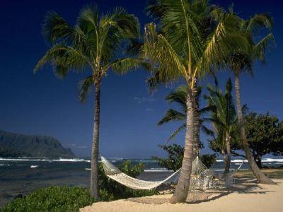 Kb2vmg 4 key biscayne island for Buro plus direct