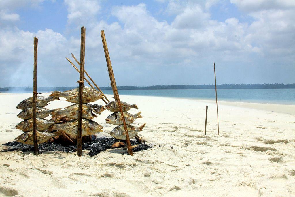 Остров Мафия 5H1Z