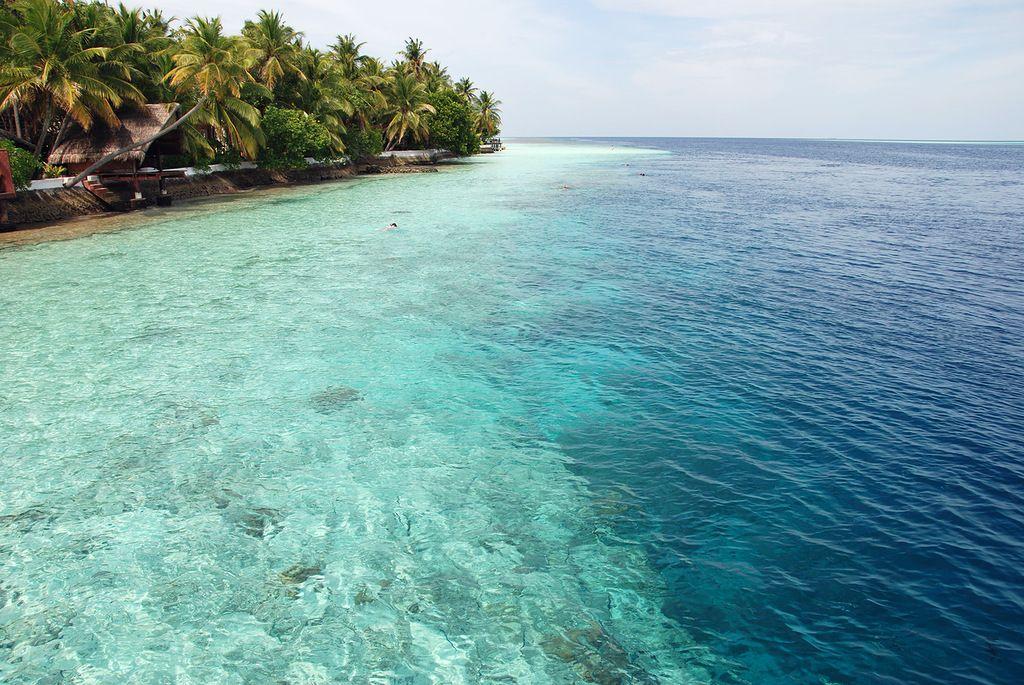 Мальдивские острова 8Q7BM
