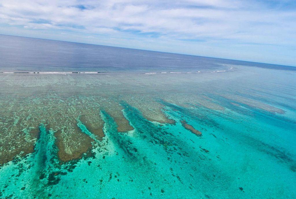 Новая Каледония TX5W