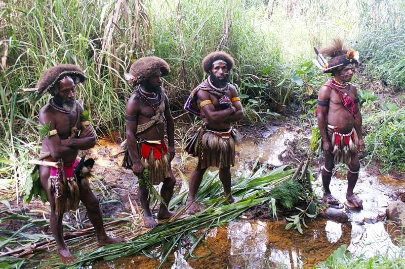 Папуа Новая Гвинея P29LL DX Новости
