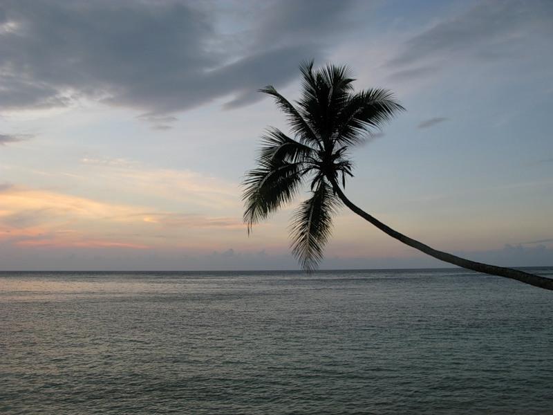 Папуа Новая Гвинея P29NO DX Новости