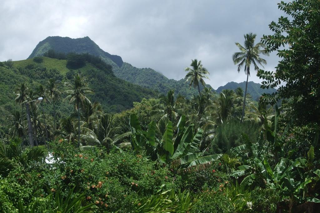 Остров Раротонга Южные острова Кука E51JJU