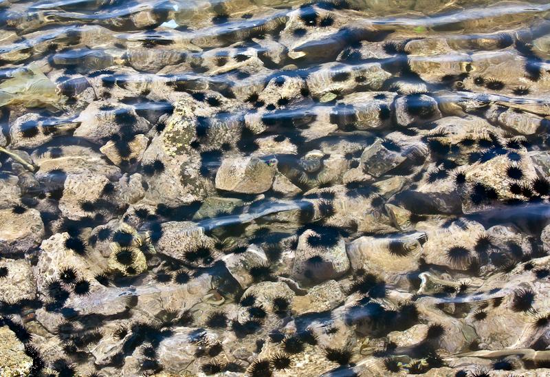 Остров Сал Кабо Верде Острова Зеленого Мыса D44TXP DX Новости