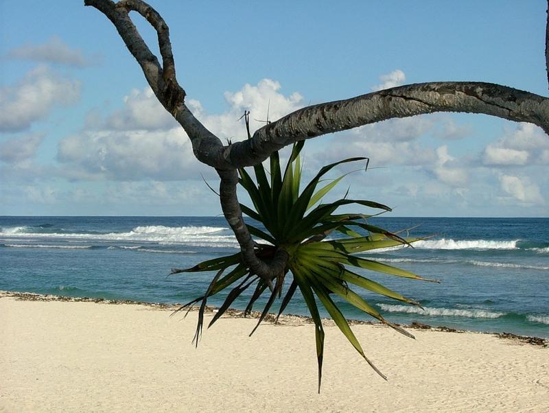 Вануату YJ0RK