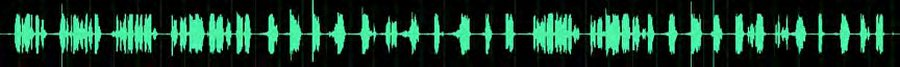 PD985 Noisy Environmen DMR Radio