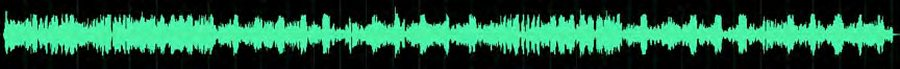 PD985 DMR Radio Без функции подавления эхо