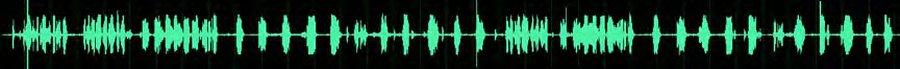 DMR Radio Windy Environment PD985