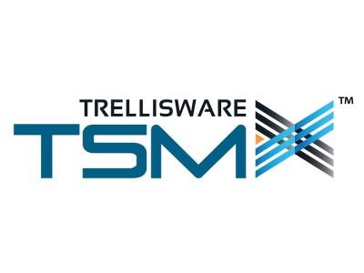 TSM-X Форма Сигнала TrellisWare